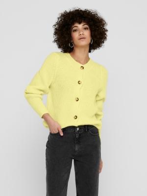 15224394 pastel yellow